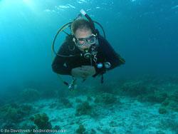 BD-060407-Moalboal-4070596-Homo-sapiens.-Linnaeus.-1758-[Diver].jpg